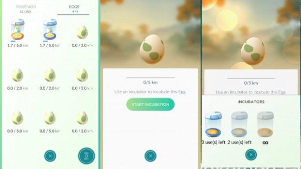Выращивание яиц в игре